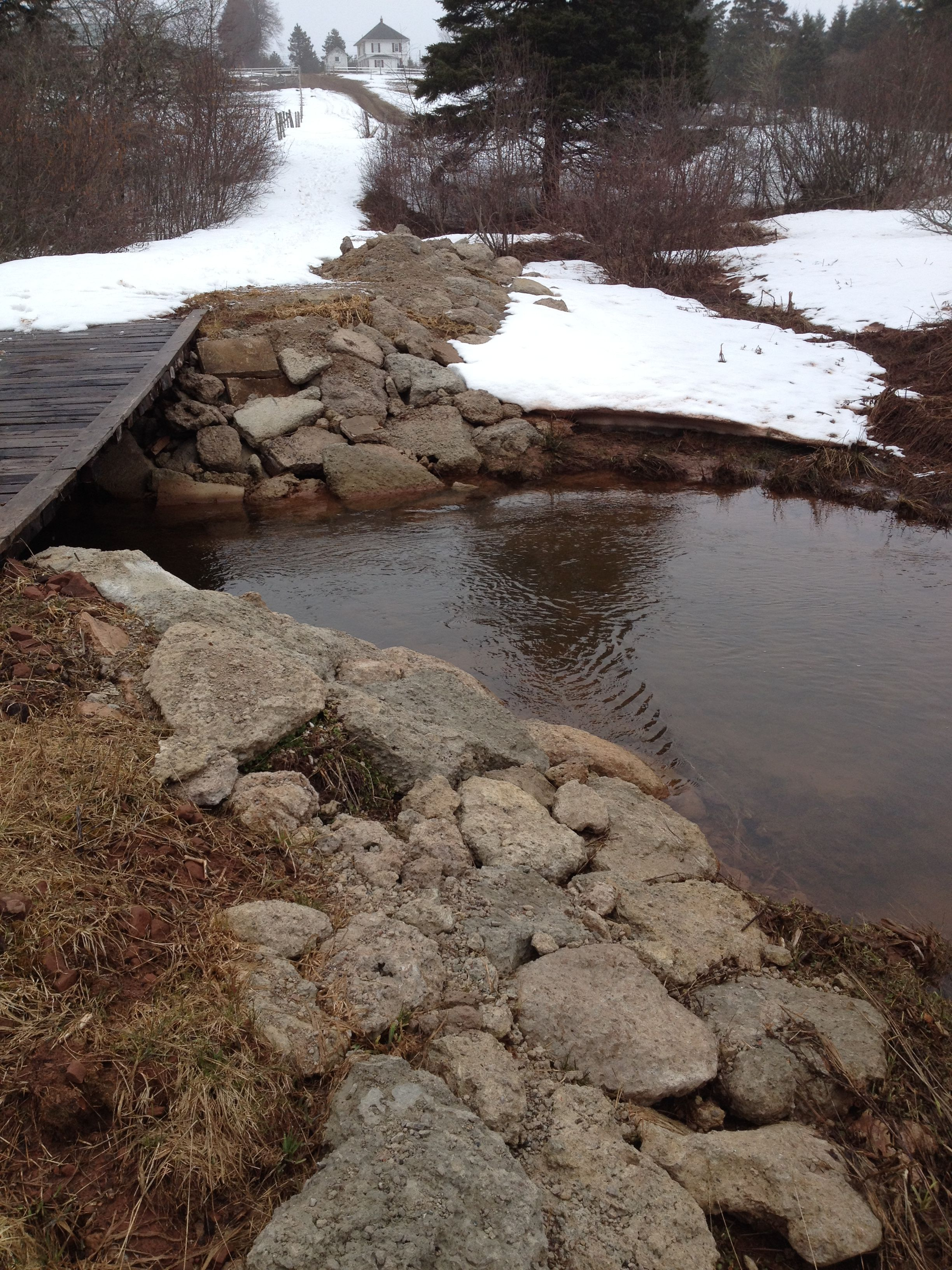 Protecting Stream Banks From Erosion And Creating A Better