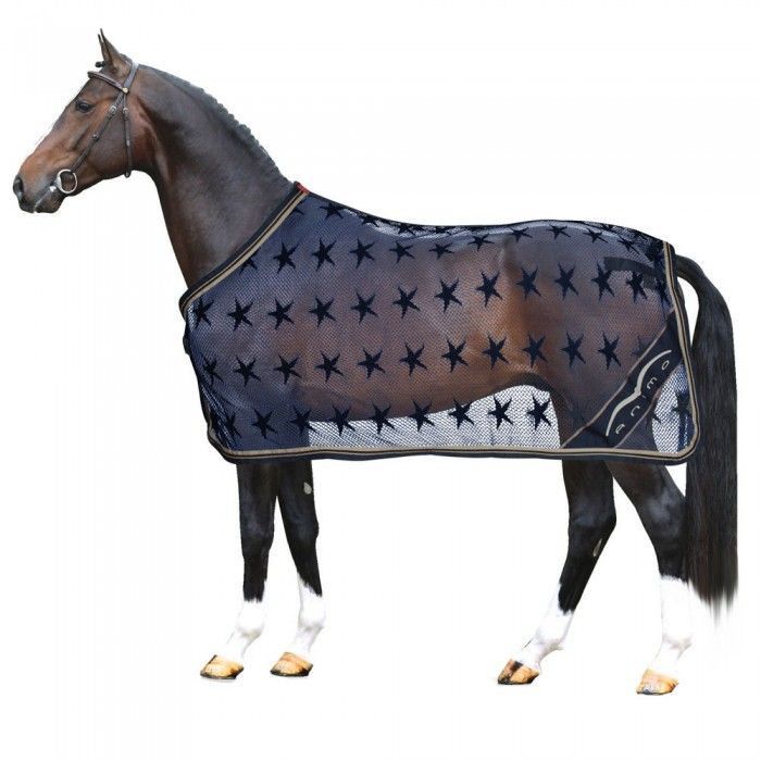 Animo Jones Cooler Rug The Horse Tack Locker Equestrian Outfits Style