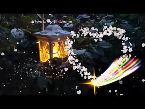 Ein Herz aus Blütenblätter begleitet dich in die Nacht �