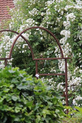 Rosenbogen Oder Gartenlaube Auf Jeden Fall Ein Platzchen Wert Rosenbogen Rosen Bogen