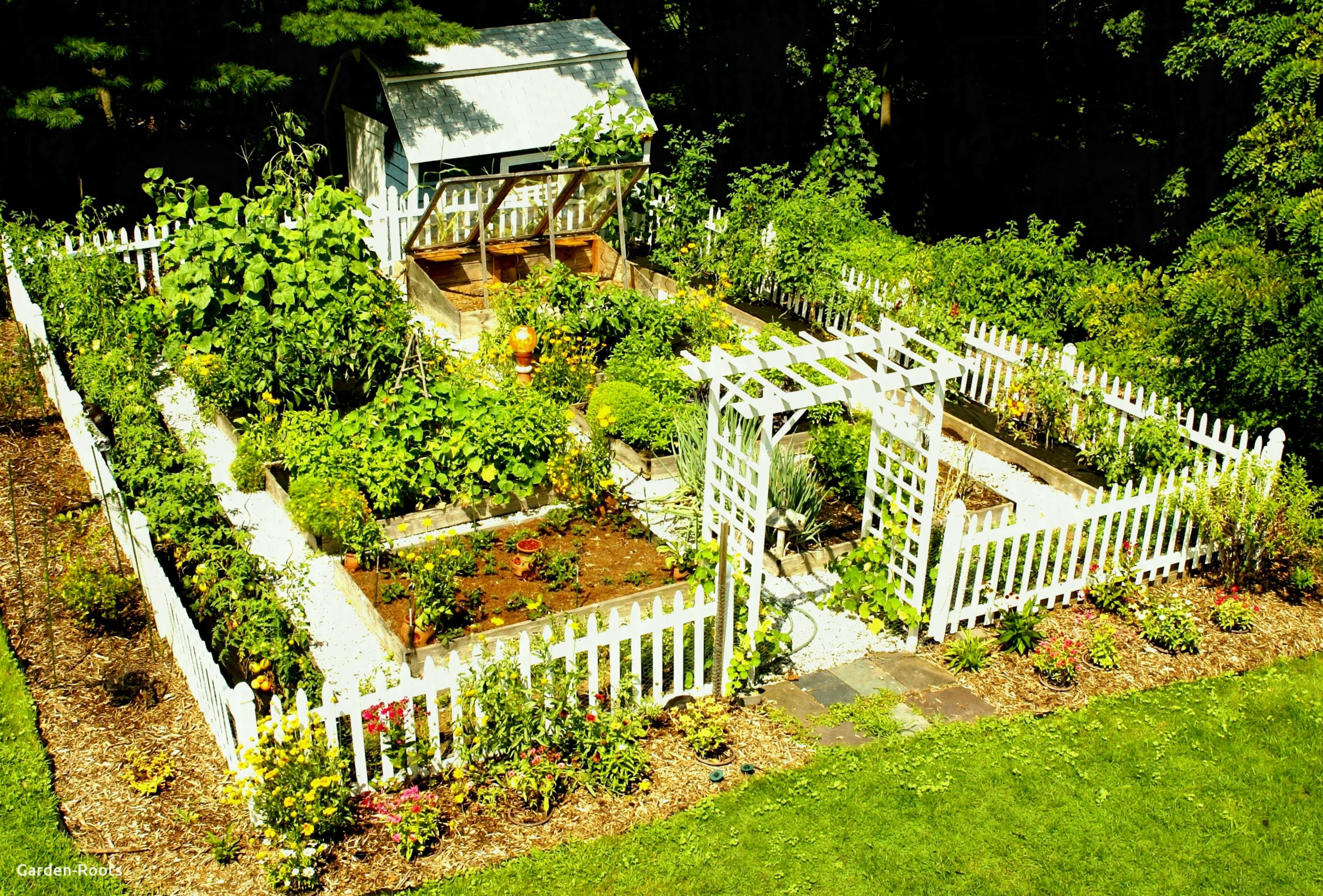 Home Vegetable Garden Design Phenomenal Best Small | Home ... on Home Backyard Ideas  id=58439