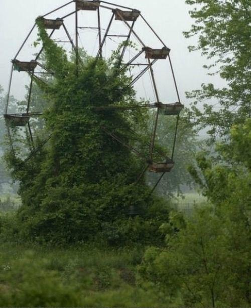 Abandoned Amusement Park In New Orleans. (mit Bildern