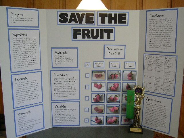 Science Boards For 4 Grade Categories Life Science
