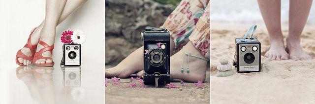Pies y cámaras vintage by ζνმ Θ' ђმґმ ღ, via Flickr