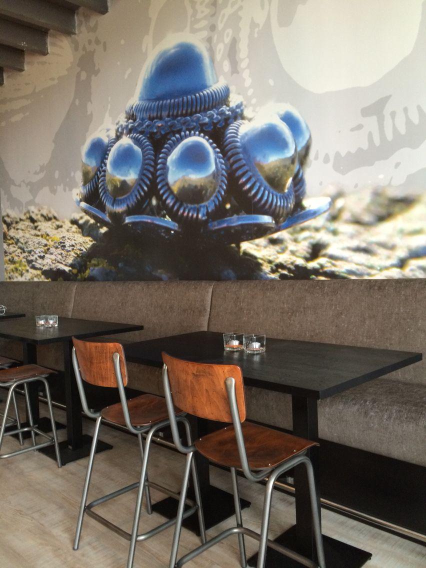 Grote Zeeuwse Knop bij De Bonte Bar. Interieurontwerp Jacque-Line Interieurvormgeving