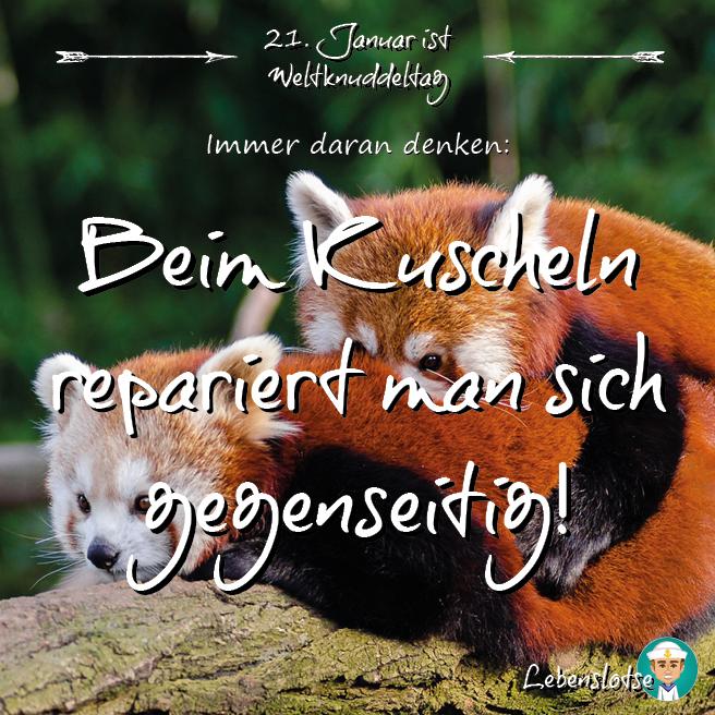 Kuschlige Grüße zum Weltknuddeltag! :) | Spirit & Motivation | Animals