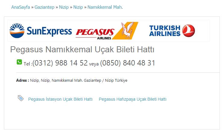 Pegasus Namıkkemal Uçak Bileti Hattı Tel :(0312) 988 14 52 veya (0850) 840 48 31