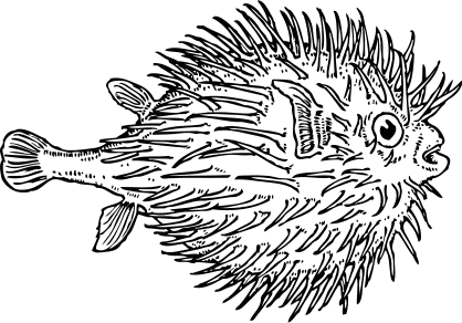 Free Black And White Fish Clipart 1 Page Of Public Domain Clip Art Public Domain Clip Art Fish Outline Fish Vector