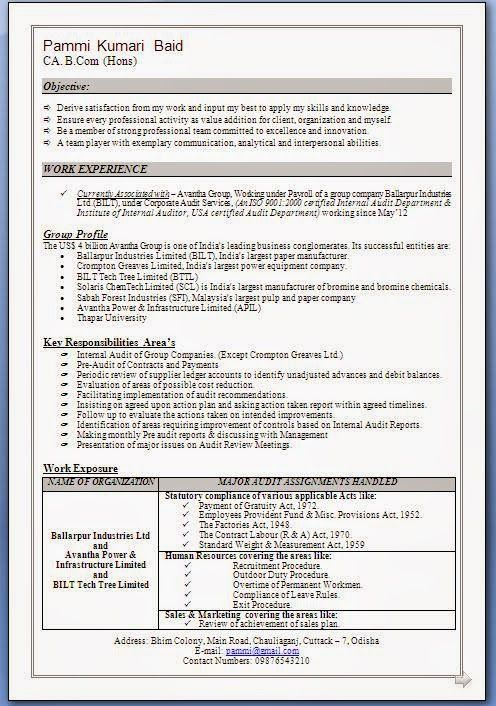 make my cv pdf format