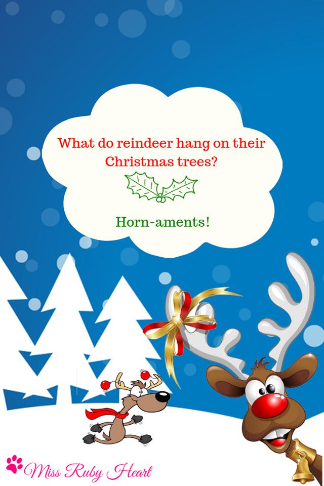 Reindeer jokes for christmas