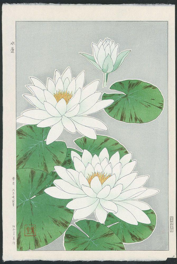 White Waterlilies By Kawarazaki Shodo 蓮の花 小原古邨 日本画