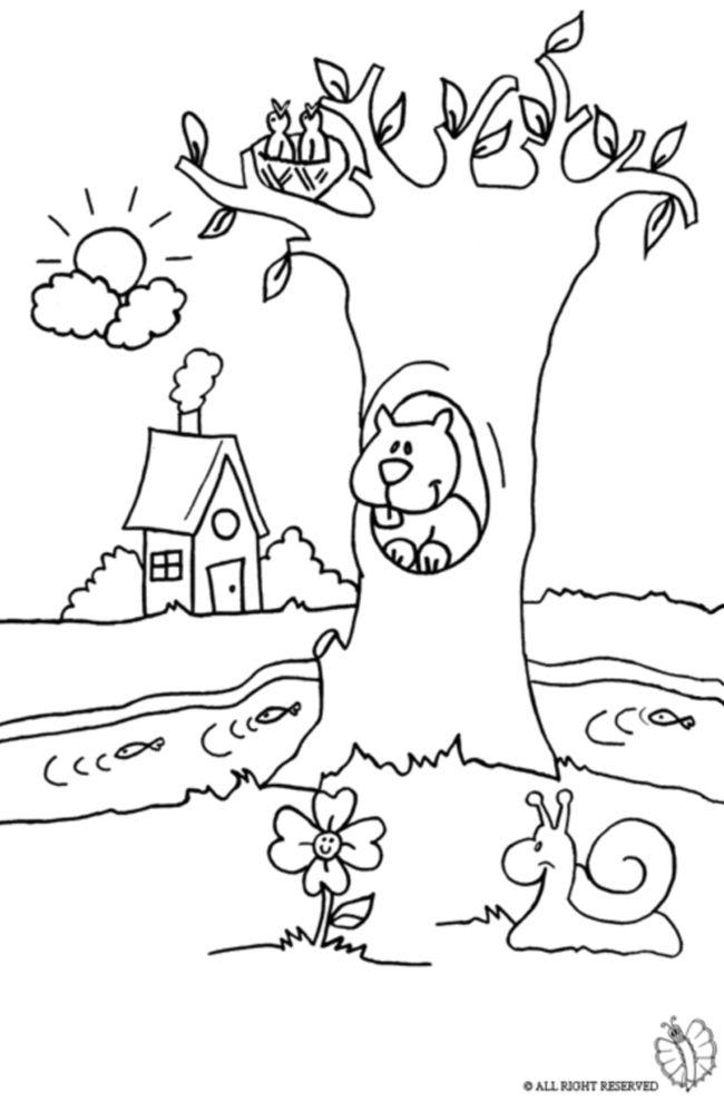 Disegno di paesaggio naturale da colorare disegni da for Spongebob da disegnare