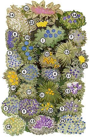 Un espace de vivaces dans un style anglais for Arbustes pour jardin anglais