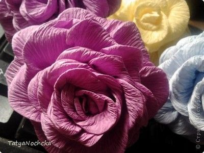 Roze Z Bibuly Kreatywne Tworzenie Paper Flowers Flowers Paper