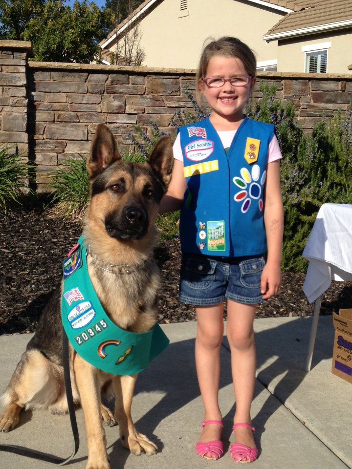 Scroll2lol Com Police Dog Selling Girl Scout Cookies Police