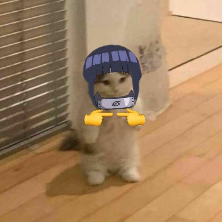 N-NARUTO KUN 😳👉🏻👈🏻   Fotos de anime engraçada, Gato de ...