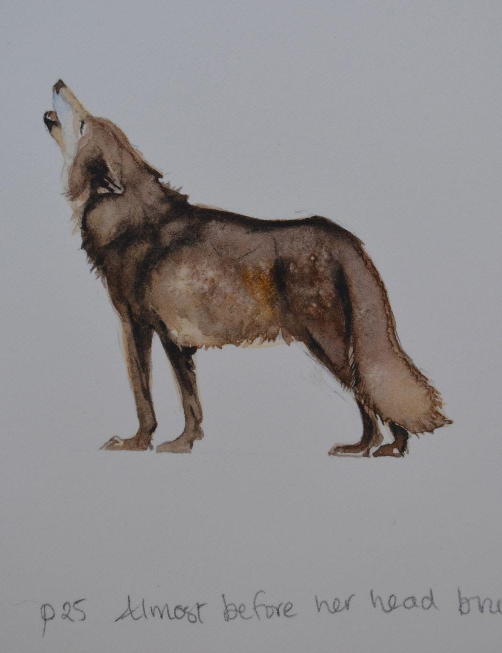 Small wolf jackie morris jackie morris pinterest wolf