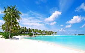 青い海 - Google 検索