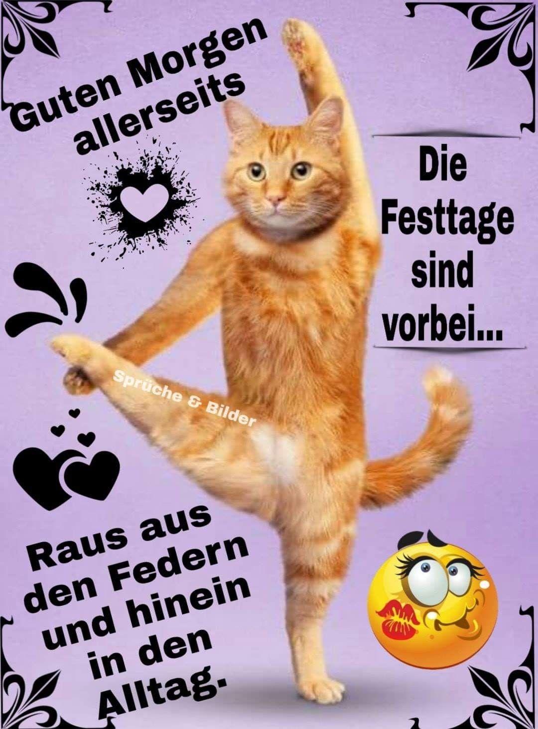 Pin Von Anja Klingberg Auf Lustig Guten Morgen Lustig Guten Morgen Katzen Geburtstag
