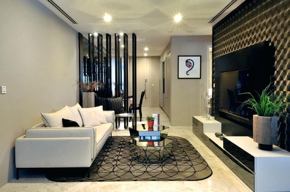 Small Condo Design Home Condominium Interior Room Interior And
