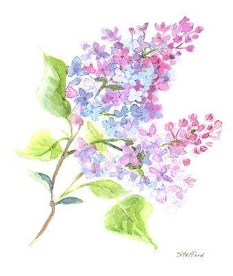 Resultat De Recherche D Images Pour Fleur De Lilas Tattoo