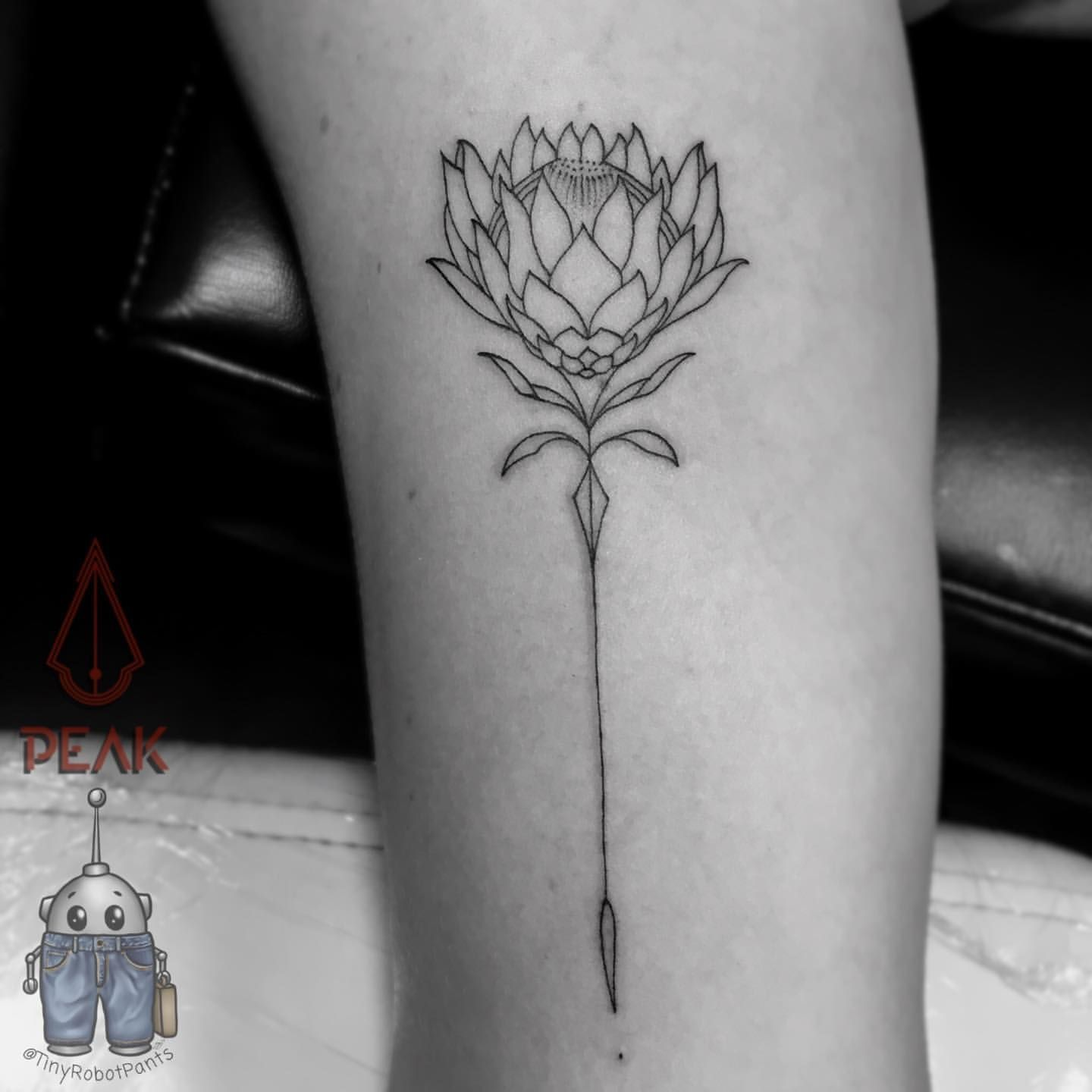 Protea Tattoo Google Search Africa Tattoos Body Art Tattoos Beauty Tattoos