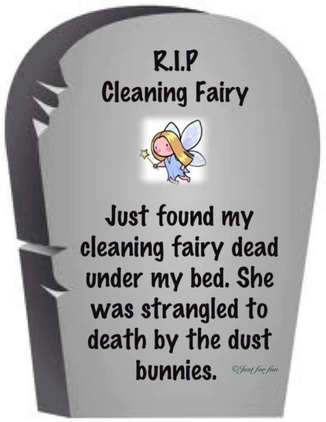 Funny #181 - RIP Cleaning Fairy