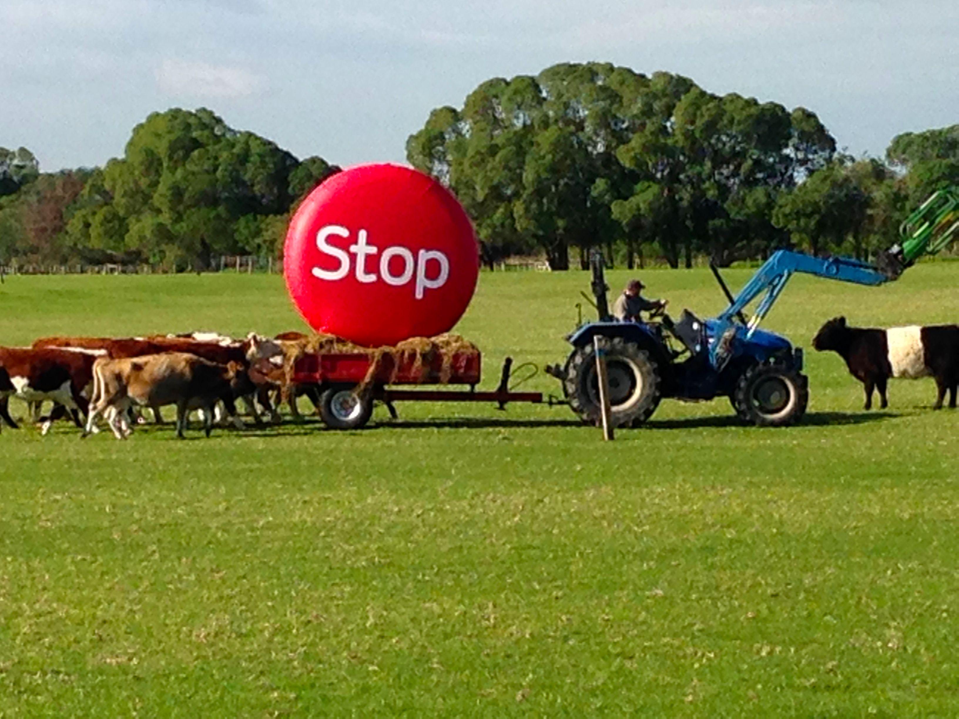 Get ready to STOP! www.stoptobernz.co.nz