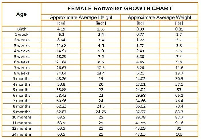 Rottweiler Growth Chart