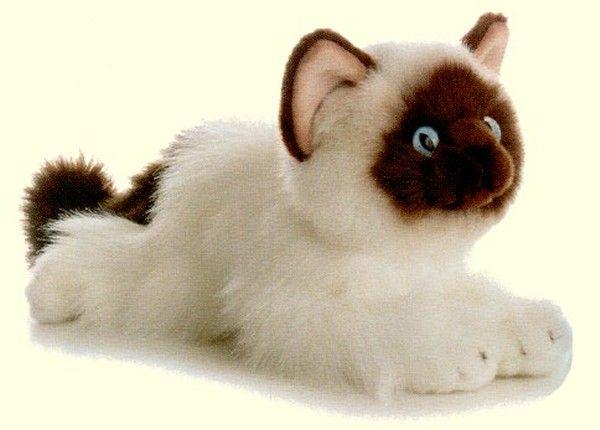 Plush Cats Amp Kittens Stuffed Animals Brinquedos