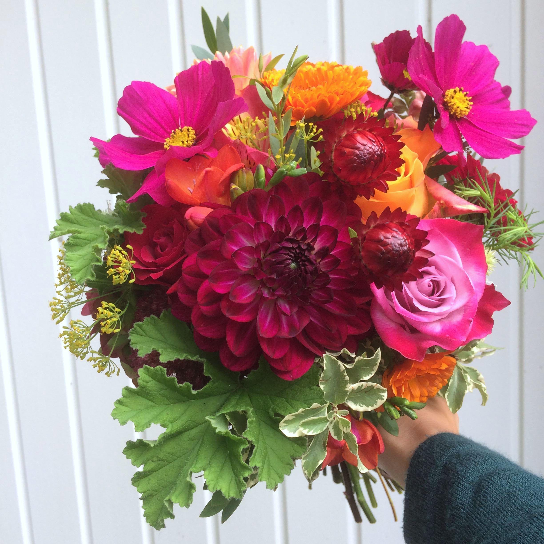Colourful September Flowers September flowers, Fall
