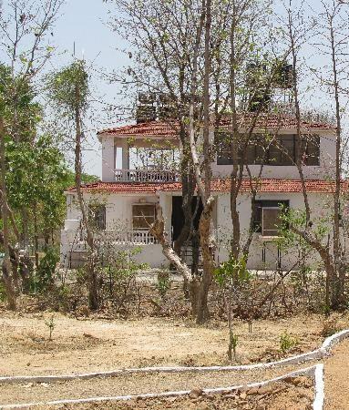 Tiger Trails (Chandrapur, India - Maharashtra) - Lodge Reviews - TripAdvisor