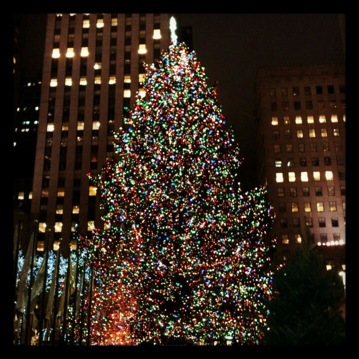 Amazing Christmas Tree Rockefella Center New York Rockefeller Center Christmas Tree
