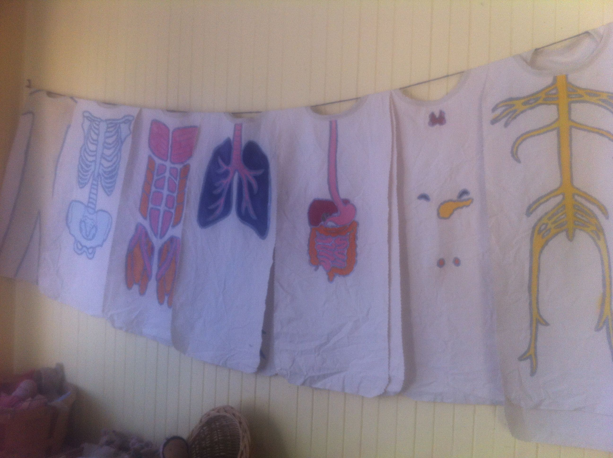 Anatomy Aprons Made By Deette For Curriculum On How Our Bodies Work
