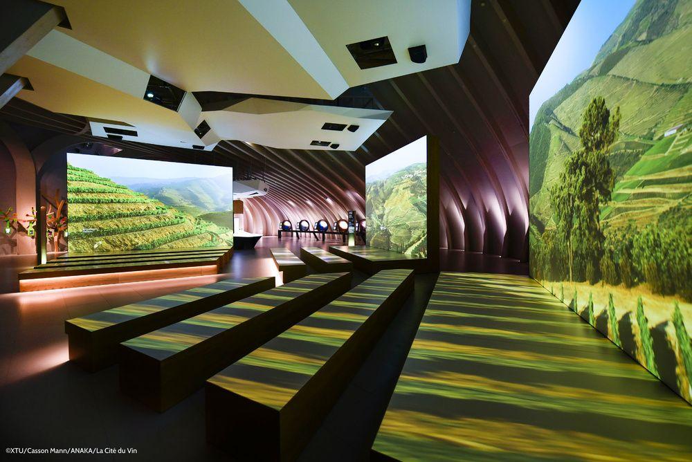 Envie d'un voyage immersif à la découverte des cultures du vin ? Direction la Cité du Vin à Bordeaux, le plus grand musée au monde consacré aux grands crus.