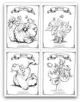 free printable garden pumpkin spinach squash and tomato coloring activity page for - Activity Pages Printable