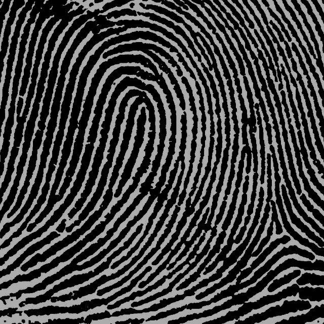 Fingerprint pattern