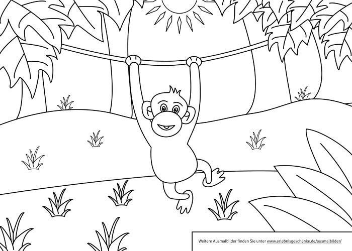 Ausmalbilder zum Ausdrucken  Affen Ausmalbilder und Ausmalen