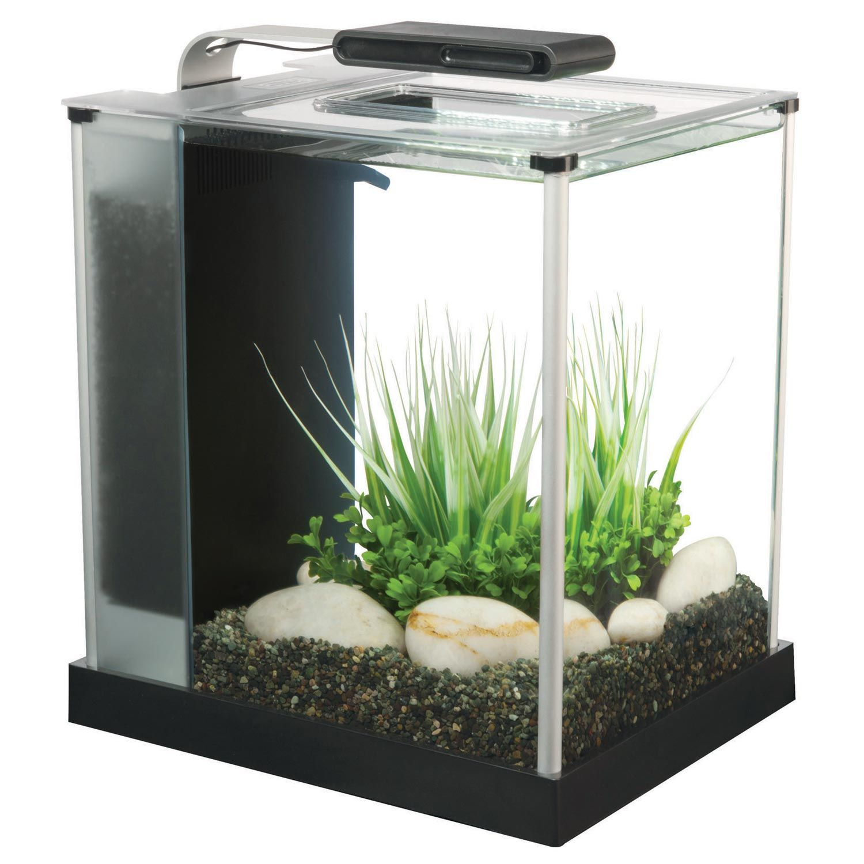 Aquarium Decor: Dark Gravel, White Rocks, Green Plants