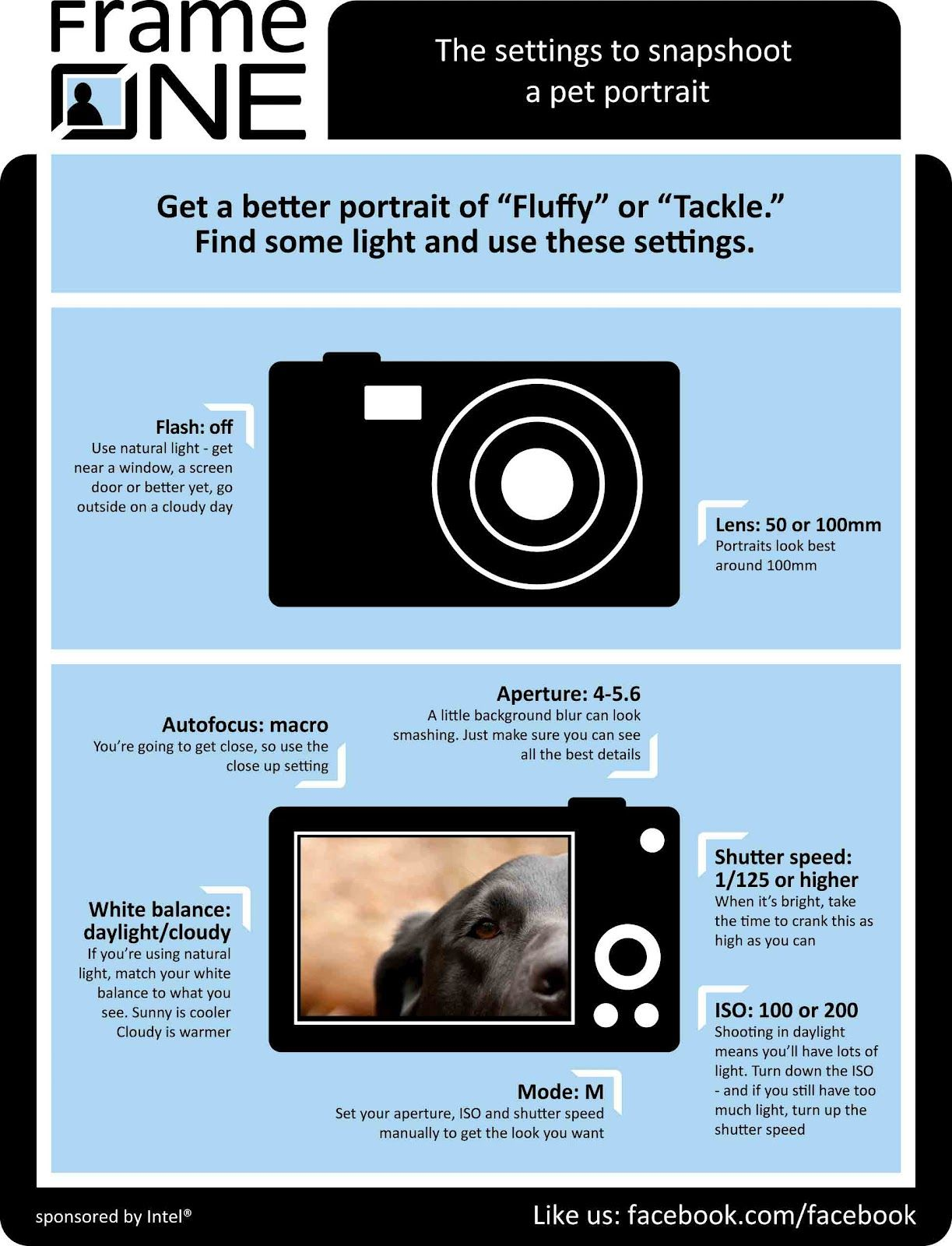 Frame One: How to snapshoot a pet - the settings.