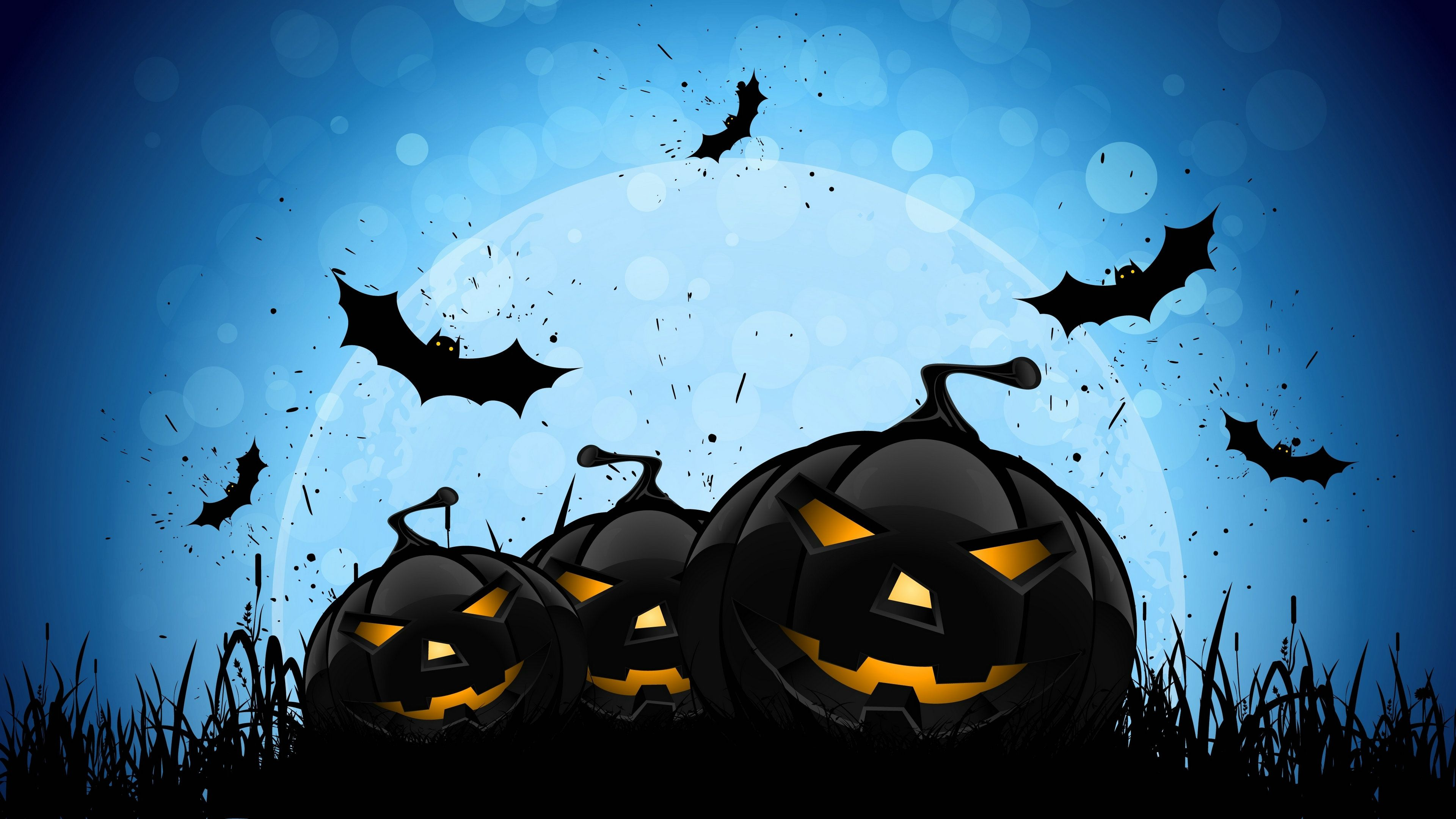 Funny Halloween Wallpapers For Desktop