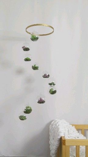 Photo of Spinning Terrarium Mobile