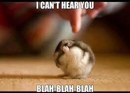 I cant hear you XD