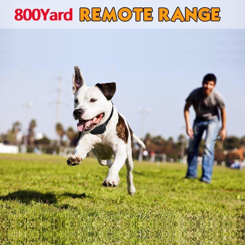 Dog Training Collar Automatic Bark Collar With 800 Yards Remote