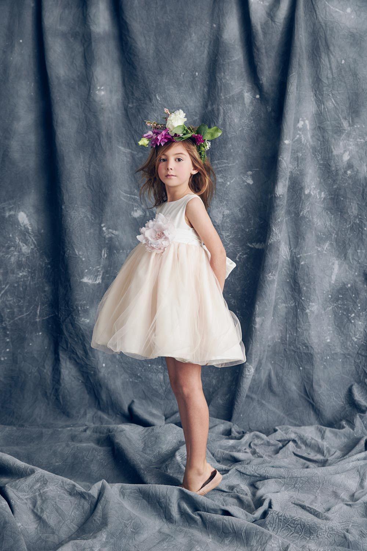 Nellystella Love Natalie Dress in Heavenly Pink | 結婚式 ドレス ...