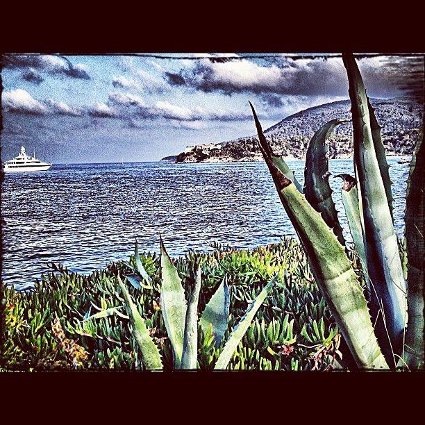 """@ilaria_agostini's photo: """"From Porto Azzurro, Elba Island"""""""