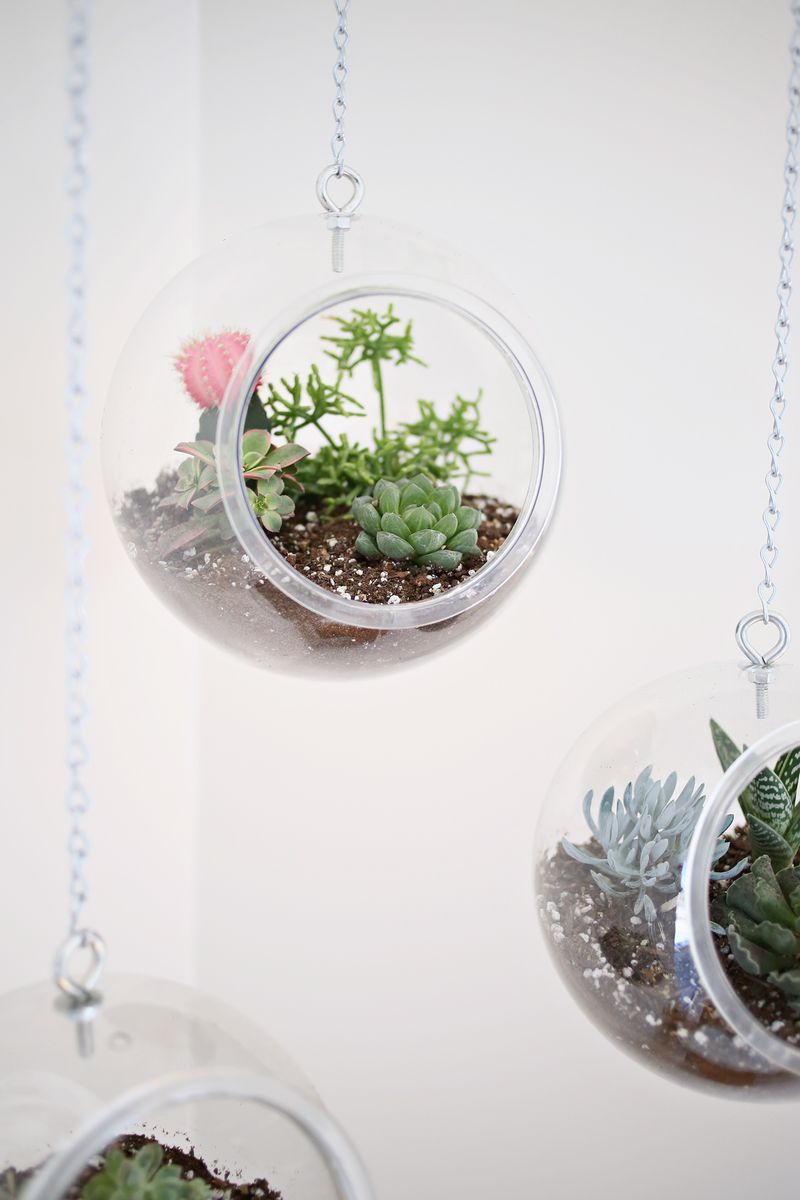 Hanging planter made with plastic fishbowls diy projects ideas