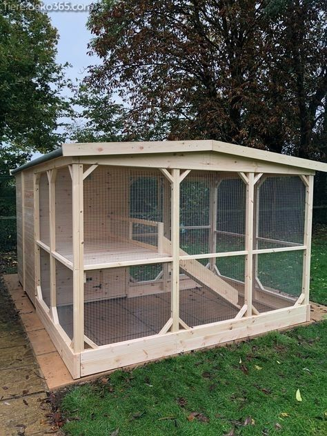 Photo of Creative and Great Simple Cat Cages Lateral or Un …