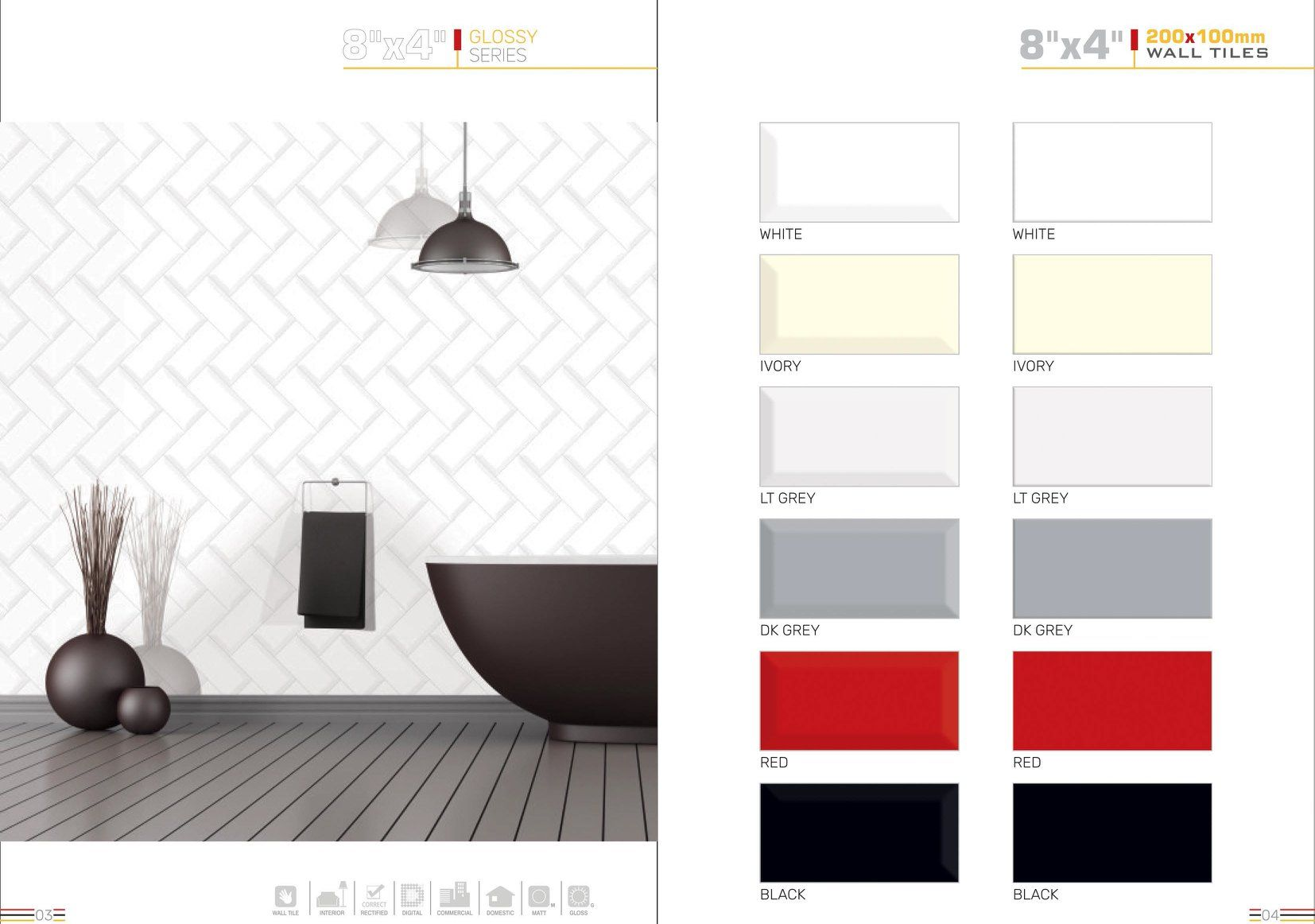 Millennium Tiles 100x200mm 4x8 Subwaytile Glossy Series Product Catalogue 6 Colors Product Variations 2 Designs Finishings Glossy Colors W