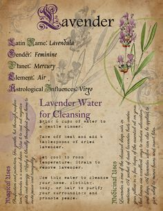 Printable Herb Profiles, Book of Shadows Pages, He